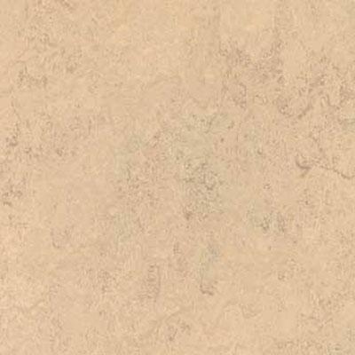 Forbo G3 Marmoleum Real 1/10 Calico Vinyl Flooring