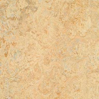 Forbo G3 Marmoleum Real 1/8 Caribbean Vinyl Flooring