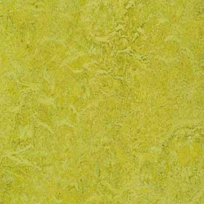Forbo G3 Marmoleum Real 1/10 Charteuse Vinyl Flooring