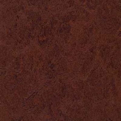 Forbo G3 Marmoleum Real 1/10 Coffee Vinyl Flooring