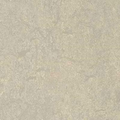 Forbo G3 Marmoleum Real 1/10 Concrete Vinyl Flooring