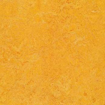 Forbo G3 Marmoleum Real 1/10 Dandelion Vinyl Flooring