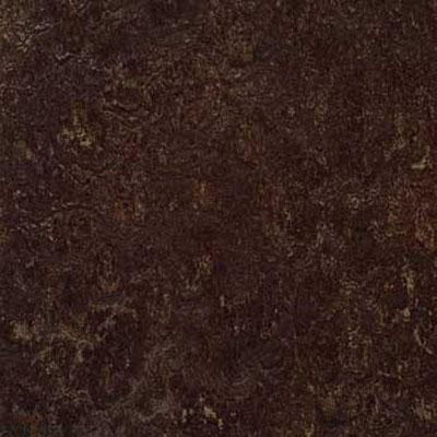 Forbo G3 Marmoleum Real 1/10 Dark Bistre Vinyl Flooring