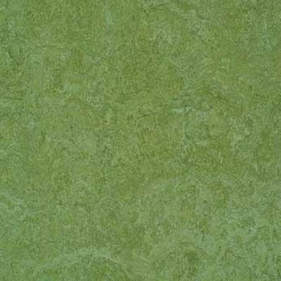 Forbo G3 Marmoleum Real 1/10 Emerald Vinyl Flooring
