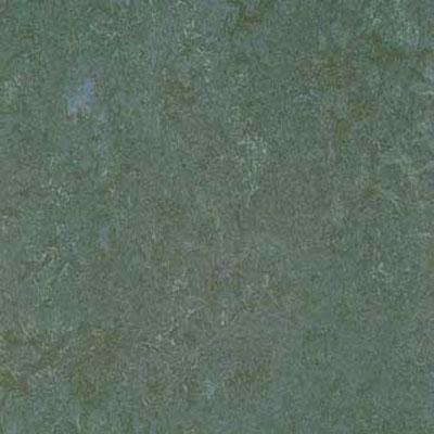 Forbo G3 Marmoleum Real 1/10 Eucalyptus Vinyl Flooring
