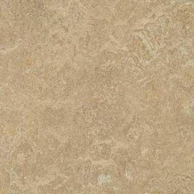 Forbo G3 Marmoleum Real 1/10 Forest Ground Vinyl Flooring
