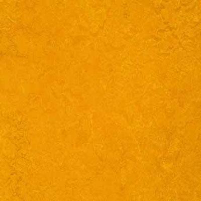Forbo G3 Marmoleum Real 1/10 Golden Sunset Vinyl Flooring