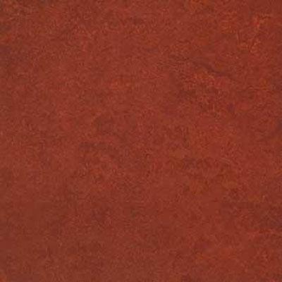 Forbo G3 Marmoleum Real 1/10 Henna Vinyl Flooring