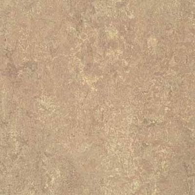Forbo G3 Marmoleum Real 1/10 Horse Roan Vinyl Flooring