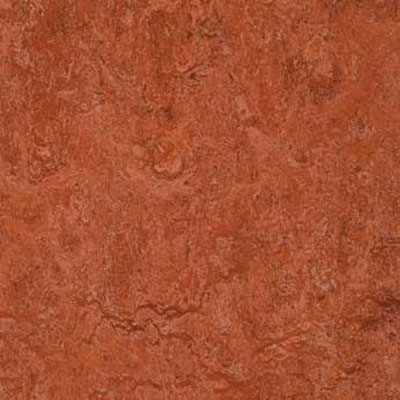 Forbo G3 Marmoleum Real 1/10 Indian Summer Vinyl Flooring