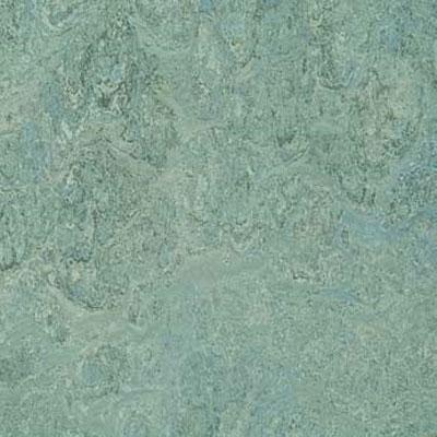 Forbo G3 Marmoleum Real 1/8 Lapponia Vinyl Flooring