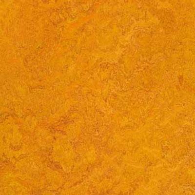 Forbo G3 Marmoleum Real 1/10 Marigold Vinyl Flooring