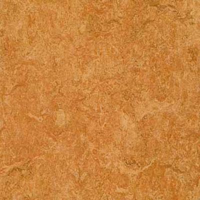 Forbo G3 Marmoleum Real 1/10 Sahara Vinyl Flooring