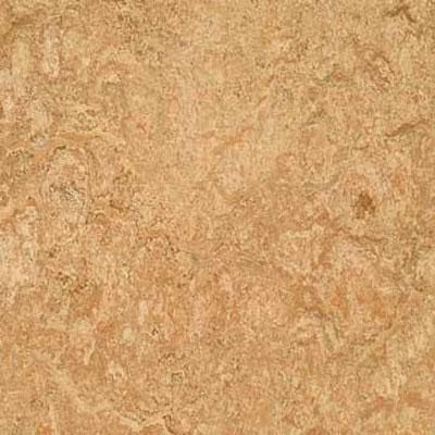 Forbo G3 Marmoleum Real 1/8 Shell Vinyl Flooring