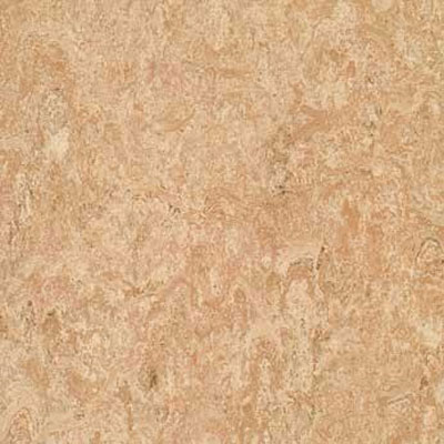 Forbo G3 Marmoleum Real 1/10 Tan Pink Vinyl Flooring