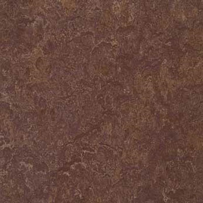 Forbo G3 Marmoleum Real 1/10 Tobacco Leaf Vinyl Flooring