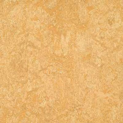 Forbo G3 Marmoleum Real 1/10 Van Gogh Vinyl Flooring