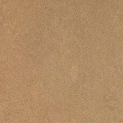Forbo Marmoleum Click Panel Camel Vinyl Flooring