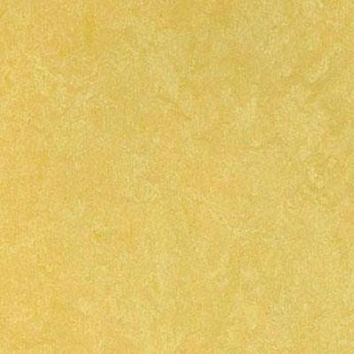 Forbo Marmoleum Click Panel Pineapple Vinyl Flooring