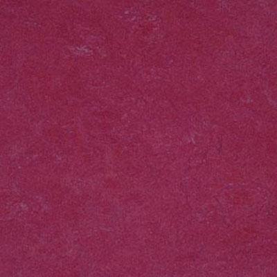 Forbo Marmoleum Click Square Raspberry Vinyl Flooring