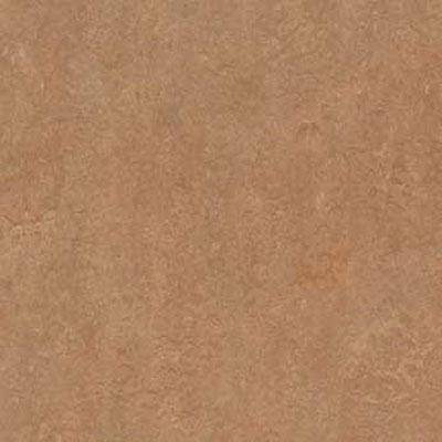 Forbo Marmoleum Click Square Shitake Vinyl Flooring