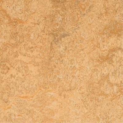 Forbo Marmoleum Click Square Van Gogh Vinyl Flooring