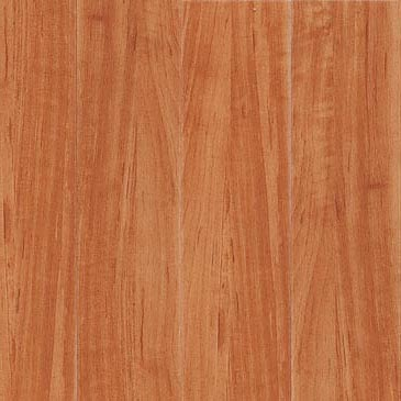 Metroflor Wood Apple Wood (Sample) Vinyl Flooring