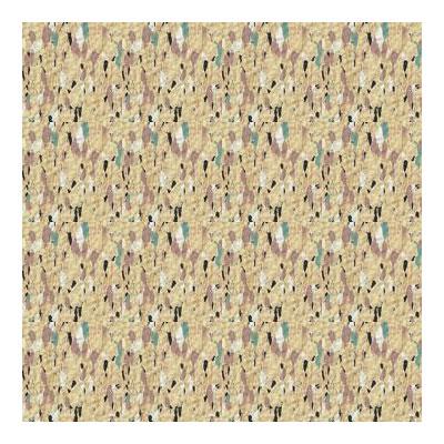 Tarkett Vinyl Composition Tile - True Step SR TS901 Vinyl Flooring