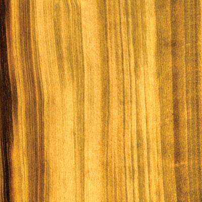 Cikel Brasilia Solid 3 1/4 Tigerwood Hardwood Flooring