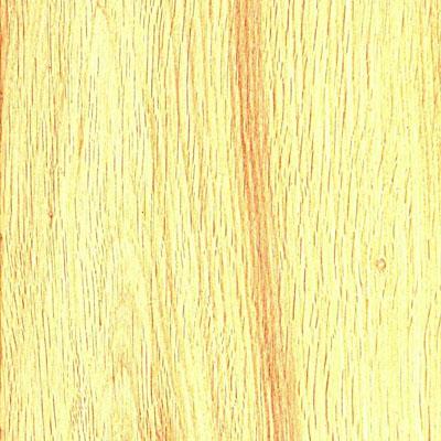 US Floors Navarre Oiled Floors Montauban (Sample) Hardwood Flooring